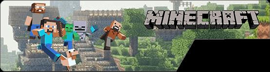 Minecraft Server PC